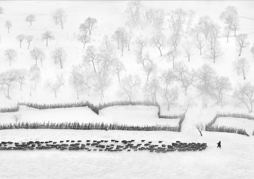 PDI Open Monochrome FIAP Silver Northern Scenery Zhizhou Jiang China