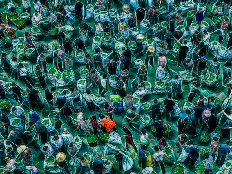 PAGB Ribbon - rhythm of Tea Market - Huaming Zhao - China