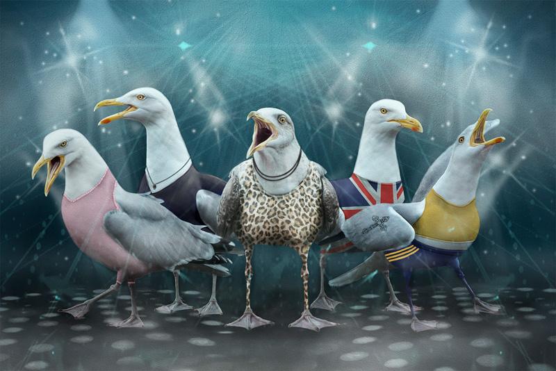 MCPF Medal  Richard Speirs - The Spice Gulls - Lynne Morris - Wales